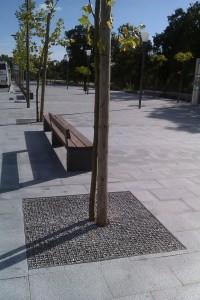 plantacoes avenida 2